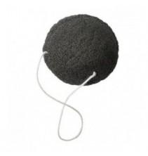 Černá konjaková houba